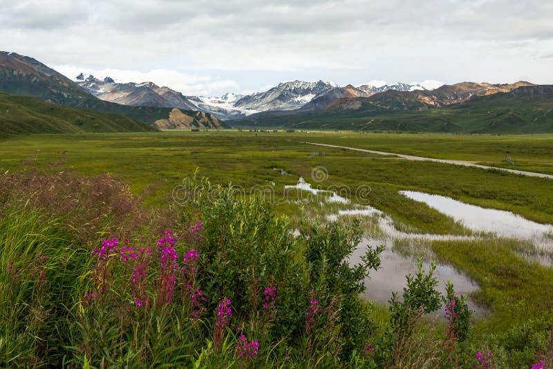 Richardson Pass, Alaska image stock