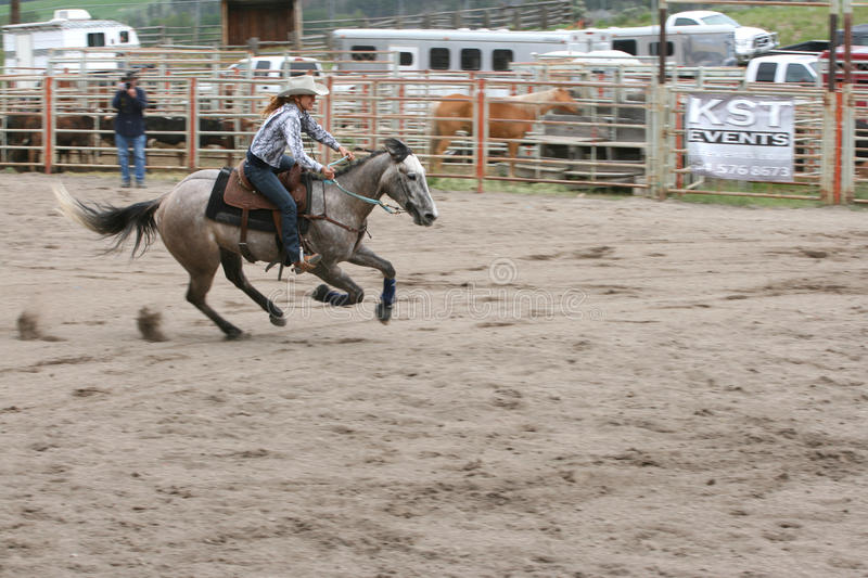 Richest Indian Rodeo royalty free stock images