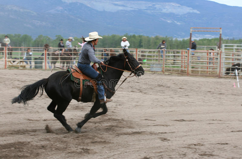 Richest Indian Rodeo stock photo