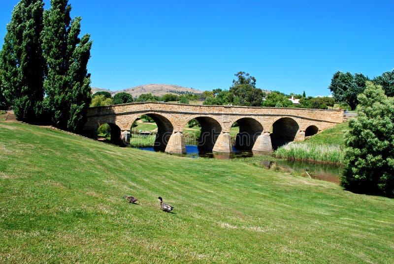 Richmond-Brücke in Tasmanien stockbilder