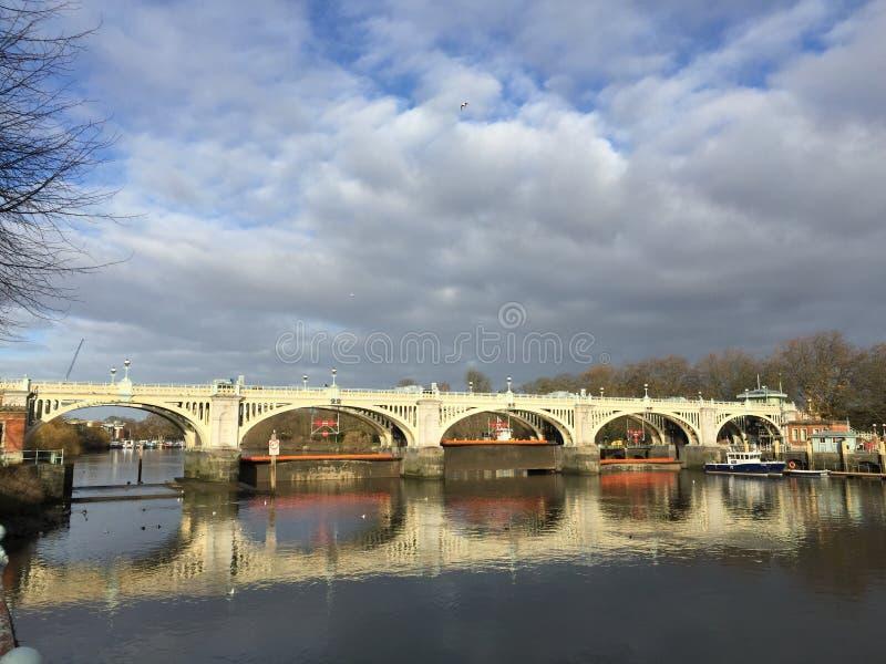 Richmond Footbridge i kędziorek zdjęcie royalty free