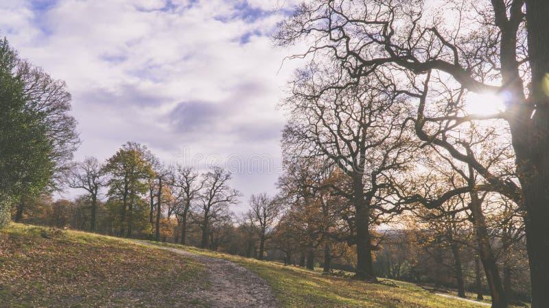 Richmond Park stock foto