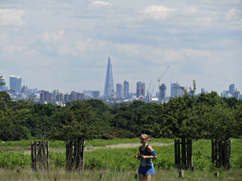 Richmond park i widok Londyński UK zdjęcie stock