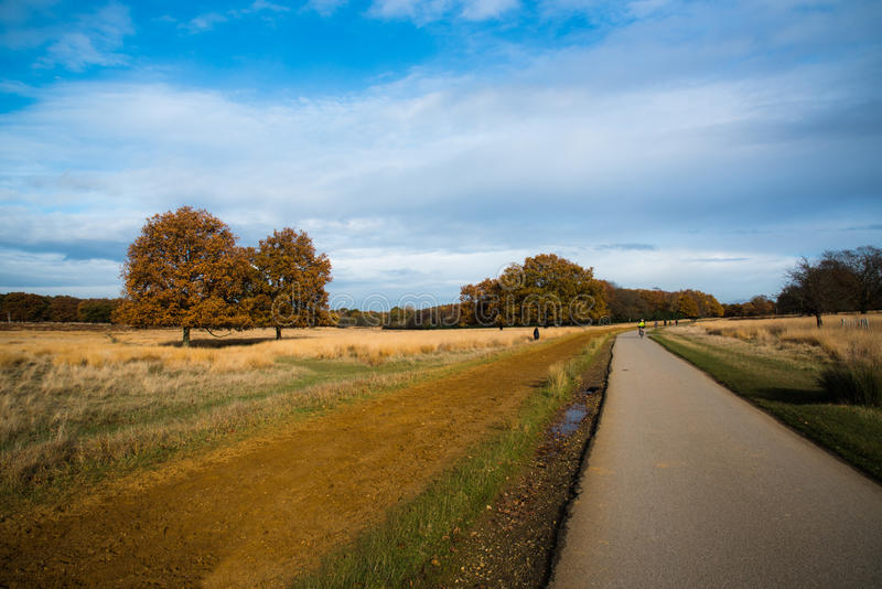 Richmond Park London, Förenade kungariket royaltyfria foton