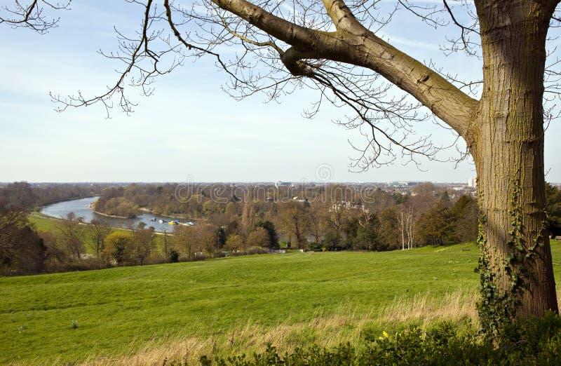 Richmond Upon Thames fotos de stock royalty free