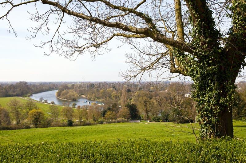 Richmond Upon Thames fotografia de stock royalty free