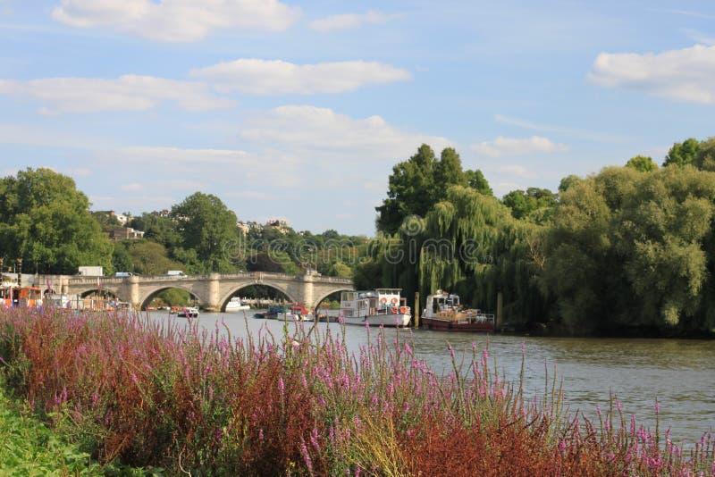 Richmond Upon Thames river bridge , uk royalty free stock images