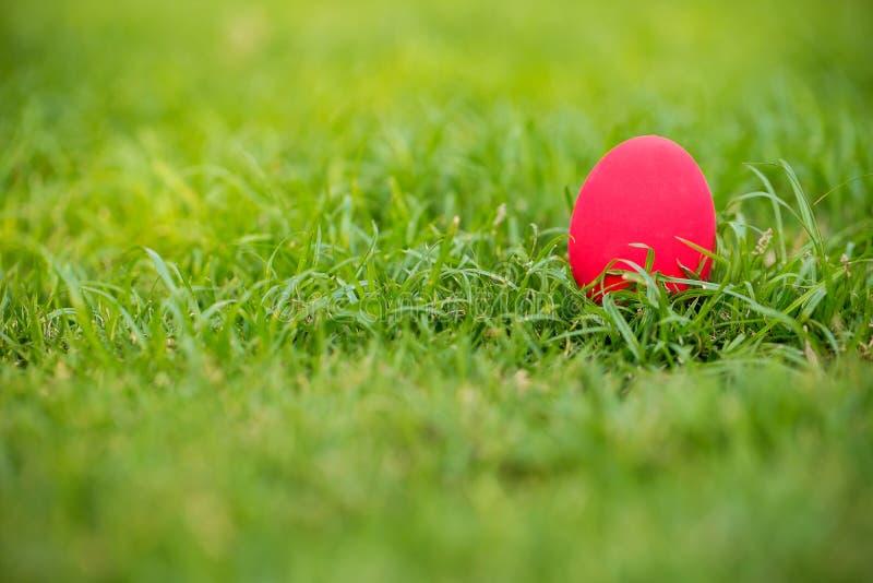 Richten Sie bunt ein Osterei auf die Rasenfläche Esserei auf dem Garten Zeichen des Ostern-` s Tagesfestivals klares Ei auf grüne stockbilder