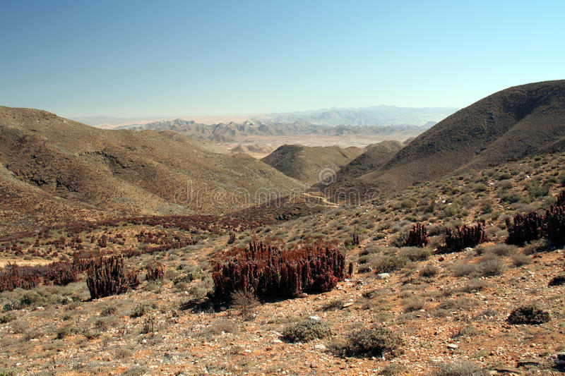 richtersveld royaltyfria foton