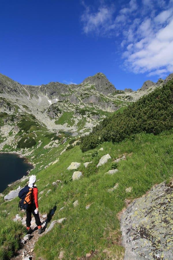 In Richtung zur Gebirgsspitze stockbilder
