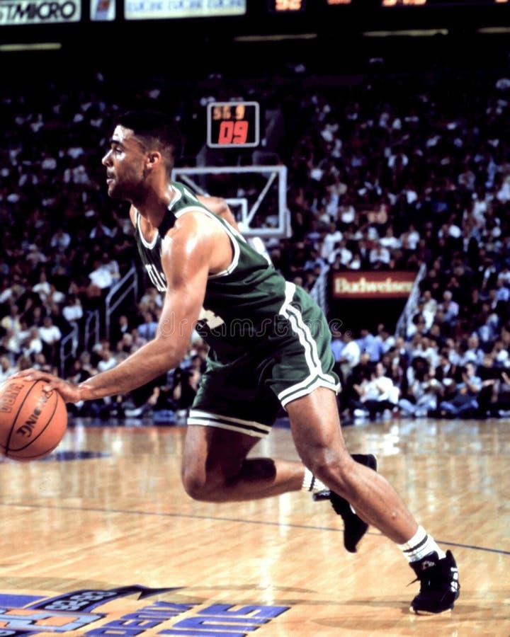 Rick Fox, Celtics de Boston foto de archivo
