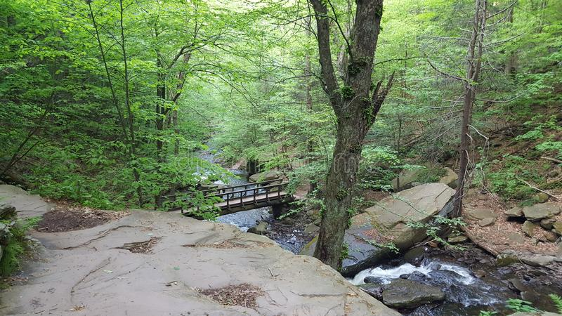 Ricketts Glen State Park Pennsylvania photos stock