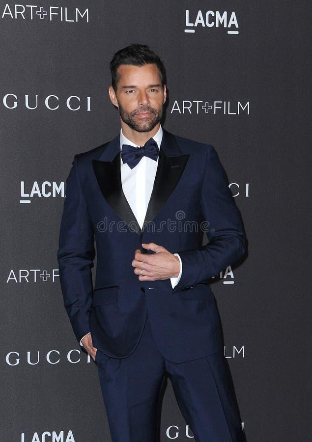Ricky Martin royalty free stock image
