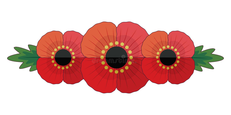 Ricordo isolato o insegna di Anzac con 3 papaveri commemorativi rossi illustrazione di stock