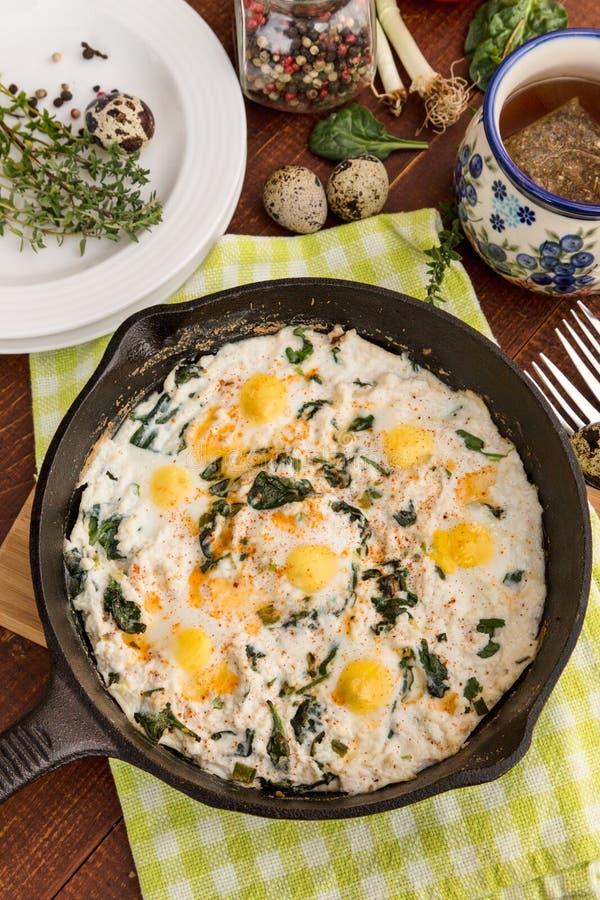 Ricotta που ψήνεται με τα αυγά σπανακιού και ορτυκιών στοκ φωτογραφίες με δικαίωμα ελεύθερης χρήσης