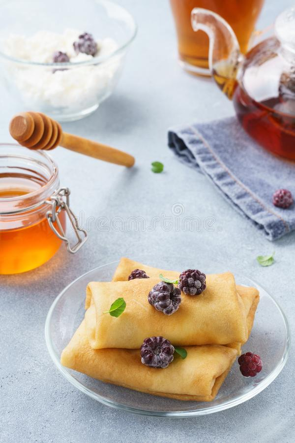 Ricotta blintzes. Stuffed crepes with honey and blackberries stock image