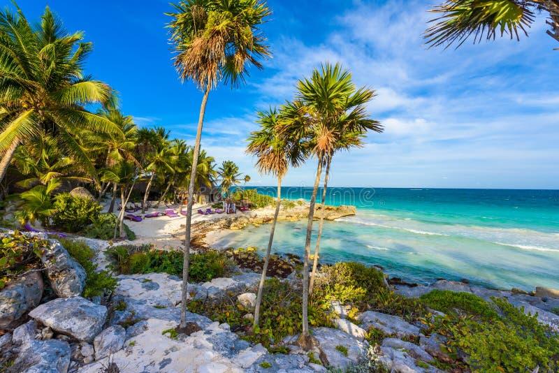 Ricreazione alla stazione balneare di paradiso con acque del turchese del mar dei Caraibi a Tulum, vicino a Cancun, maya di Rivie fotografia stock libera da diritti