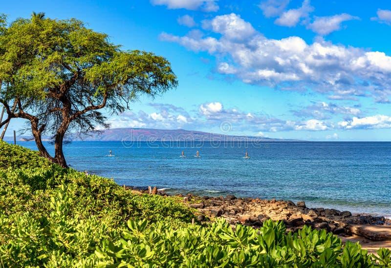 Ricreazione d'acqua al largo delle coste del Maui immagini stock
