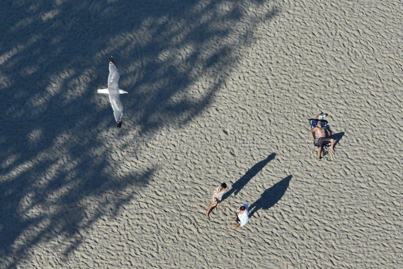 Ricreazione dei turisti sulla costa di Mar Nero della spiaggia di Mamaia fotografia stock