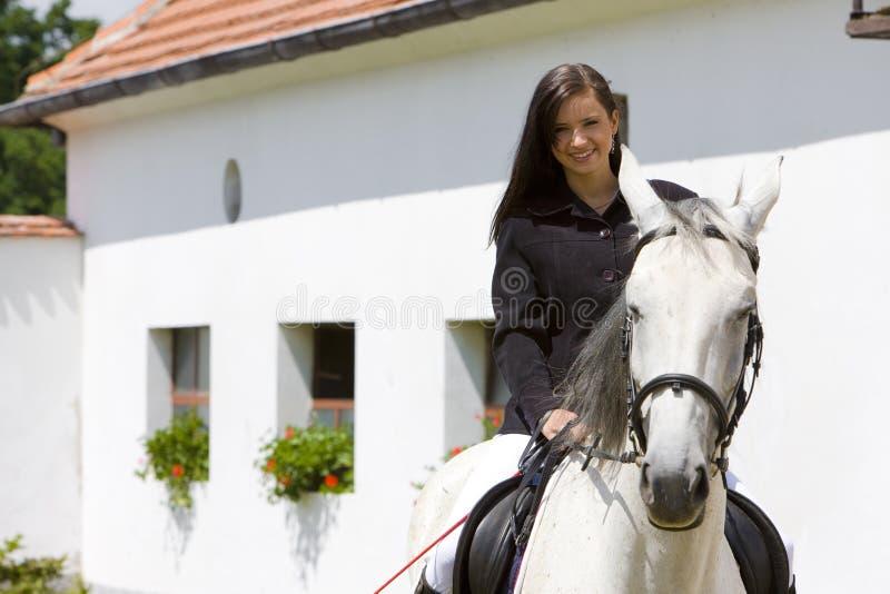 rid- hästrygg arkivbild