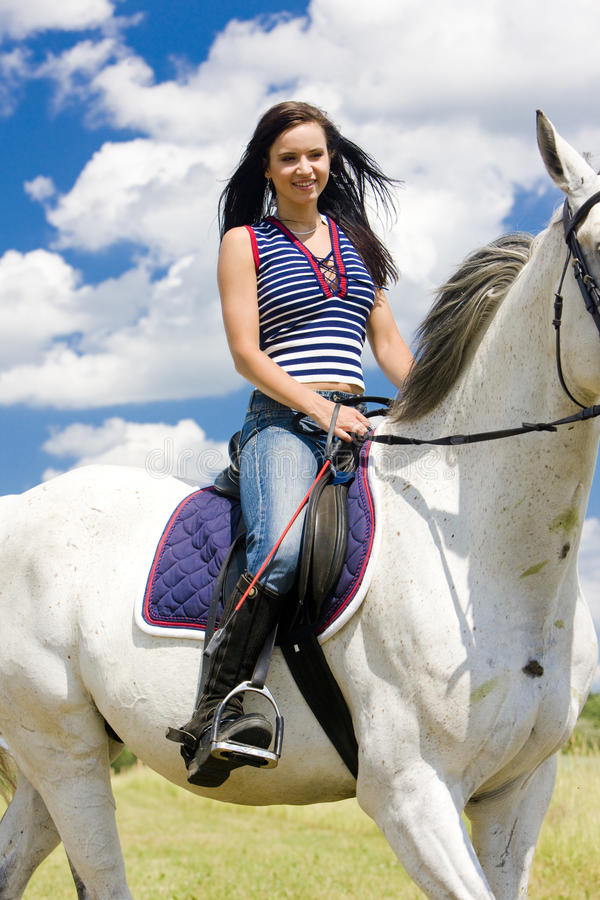 rid- hästrygg royaltyfria bilder