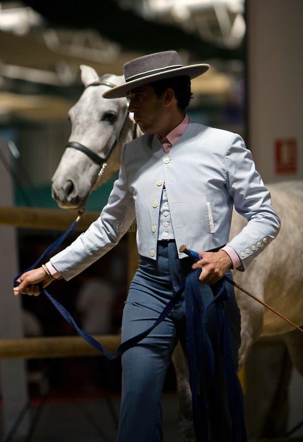 Rid- prov av morfologi till rena spanska hästar arkivbild