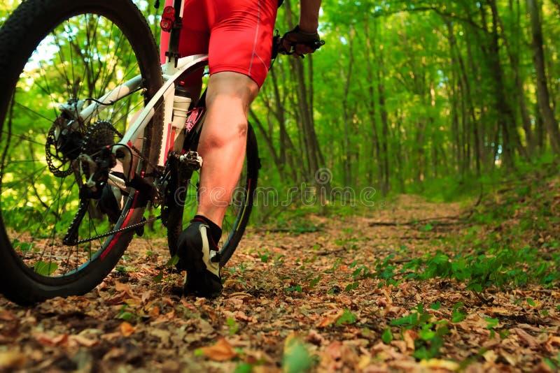Rida för mountainbikecyklist som är utomhus- fotografering för bildbyråer