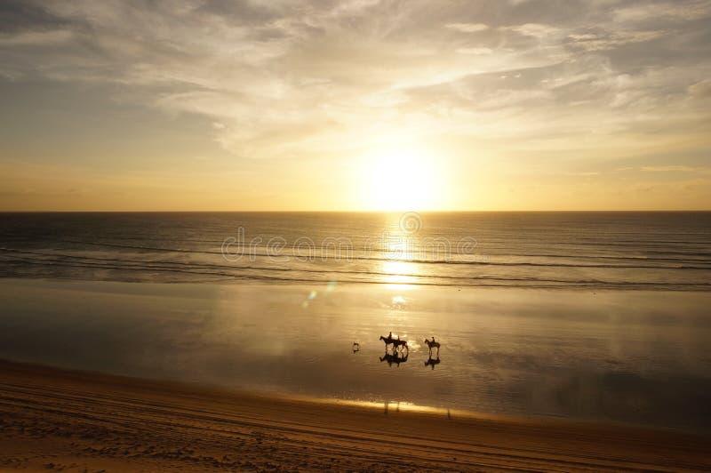 Rida på solnedgången royaltyfri fotografi