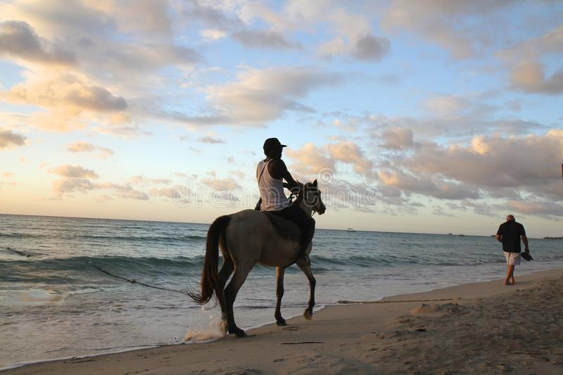 Ride horse at sunset stock photo