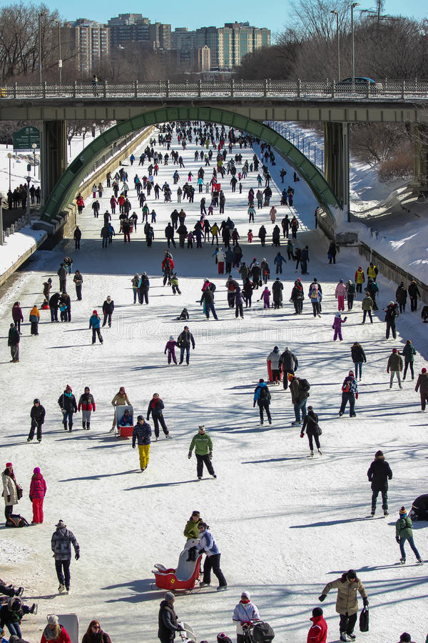 rideau канала skateway стоковые фото