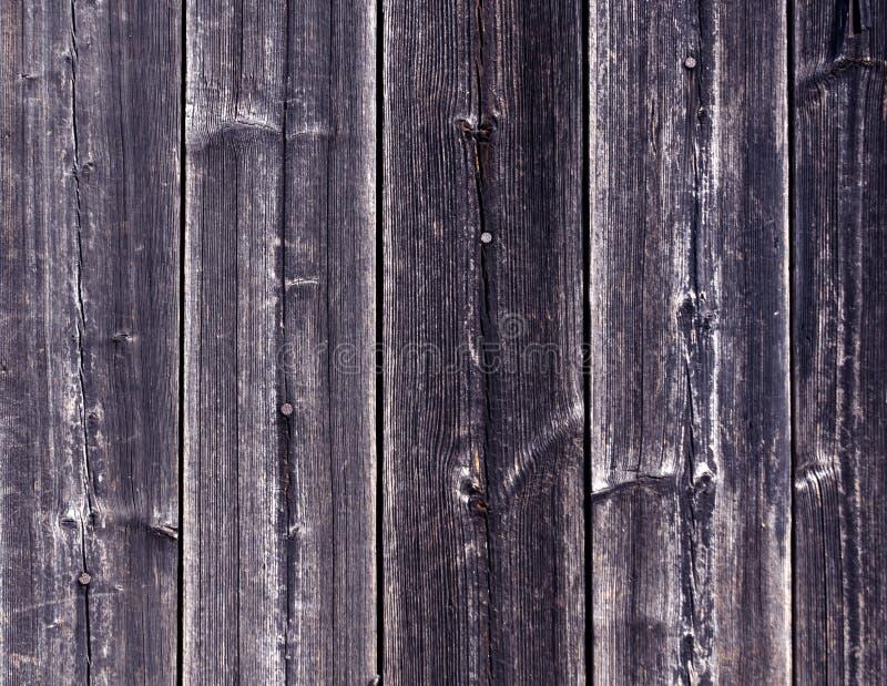 Riden ut blå trästakettextur med spikar arkivfoto