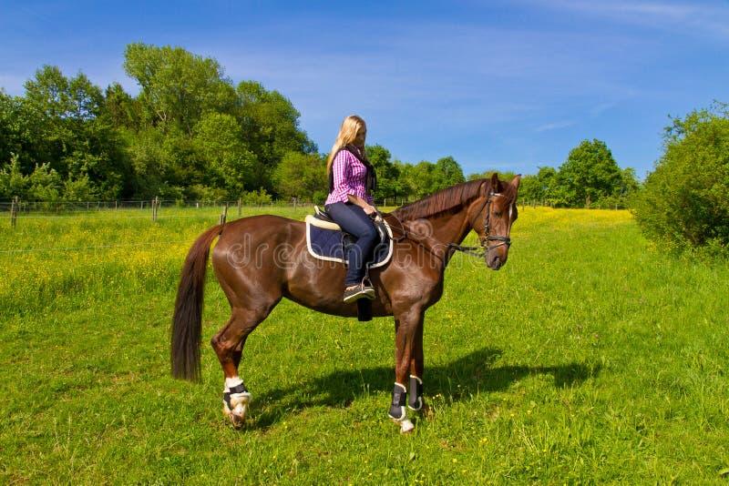 Download Rider Stock Photo - Image: 25416340