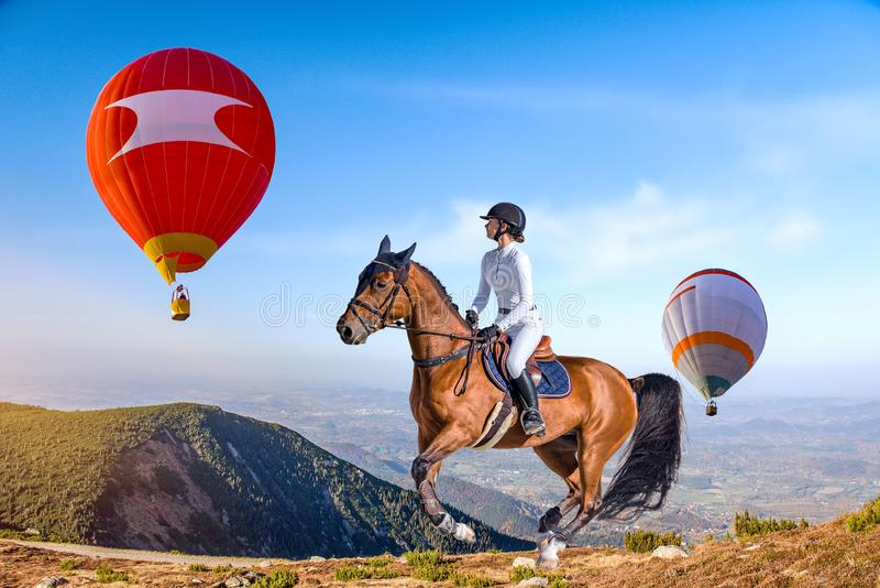 Rider of an elegant woman riding her horse. stock photo