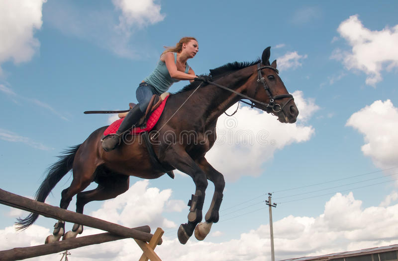 Download Rider On The Horse Stock Image - Image: 25751791