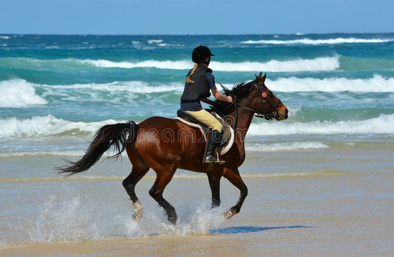 Rider horseback riding on beach stock images