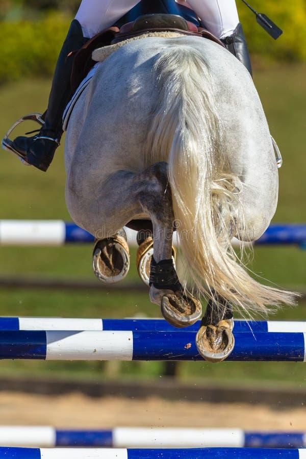 Rider Horse Jumping Closeup Rear Hoofs royalty-vrije stock afbeeldingen