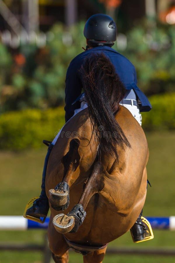 Rider Horse Jumping Closeup Rear Hoofs royalty-vrije stock afbeelding