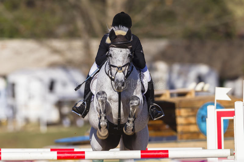 Rider Horse Jumping Poles stock images