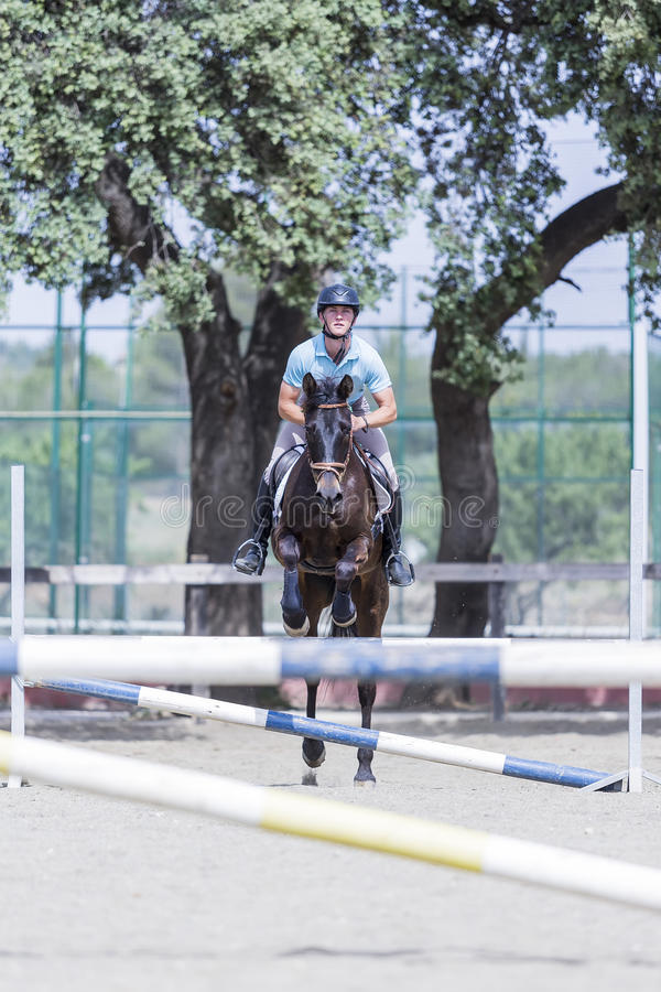 Rider jumping with horse. Young horse rider is jumping with a brown horse at the byre - focus on the face stock image