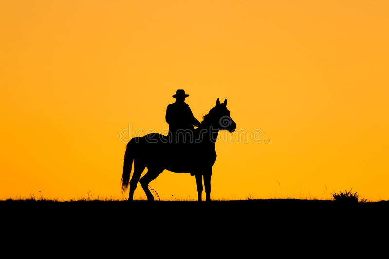 Rider man and his horse in the sunset royalty free stock photos