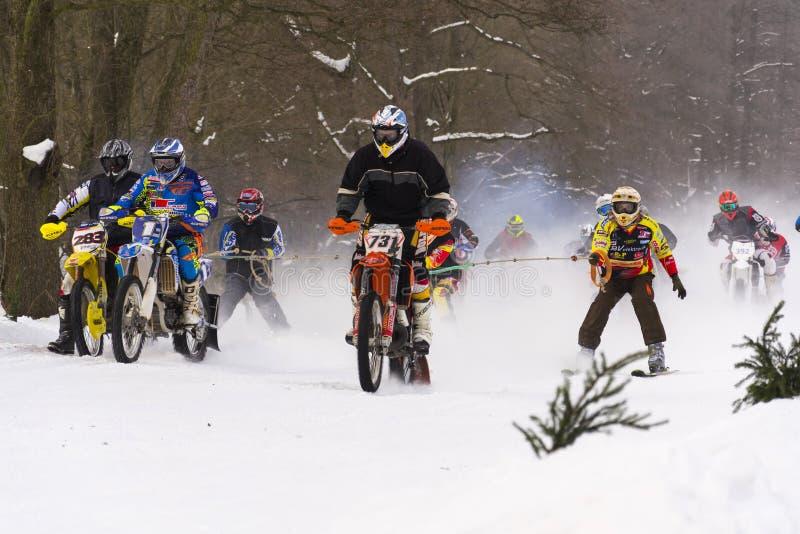 Rider skijoring racerbilar för motorcykel på spår av tjeckisk mästerskapkonkurrens 2017 i Klasterec nad Orlici, Tjeckien arkivbild