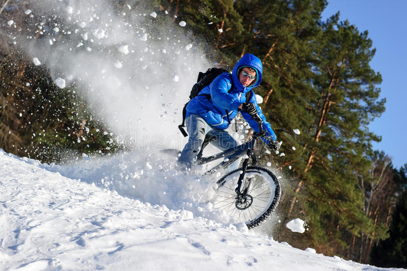 Rider snow. Rider cycling on a mountain bicycle in the snow in the winter forest stock image