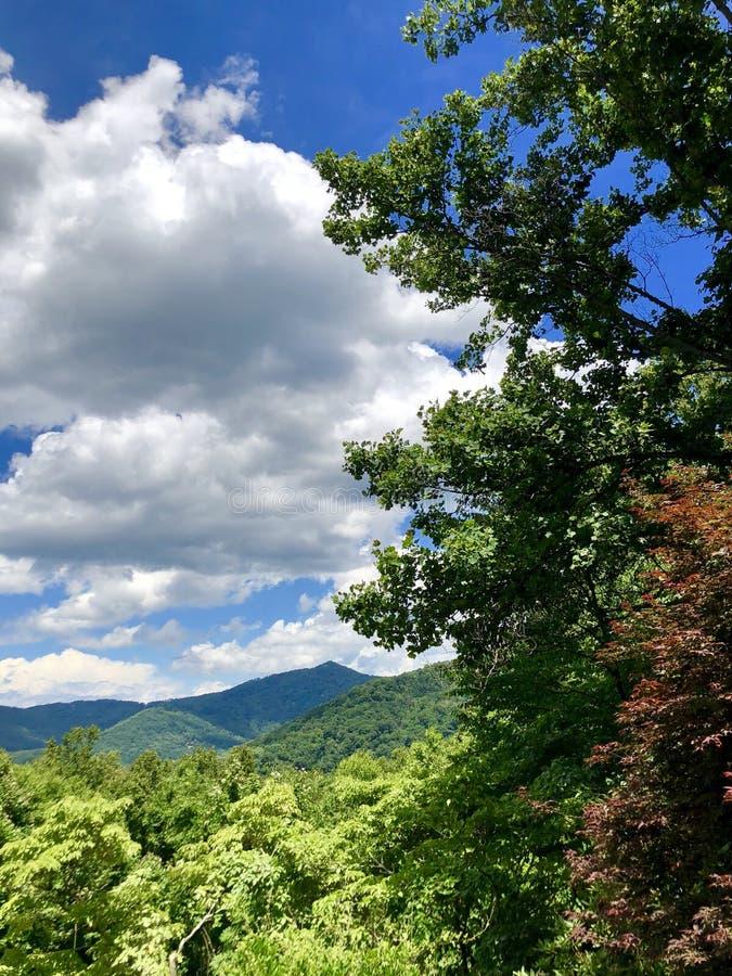 Ridge bleu en été photo stock