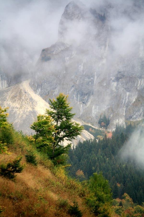 Ridge cobriu com a névoa imagens de stock