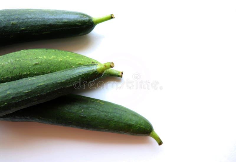 Ridge Gourd Green Vegetable foto de stock royalty free
