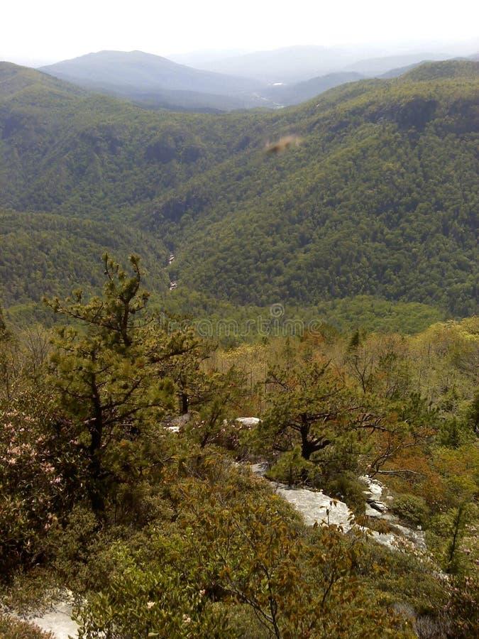 Ridge Mountain azul no desfiladeiro de Linville imagem de stock royalty free