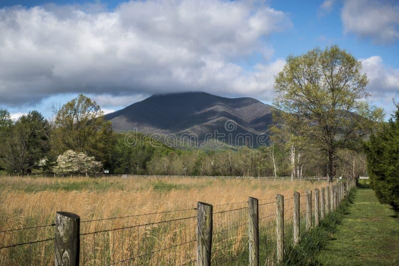 Ridge Mountain Landscape azul no pa?s imagem de stock