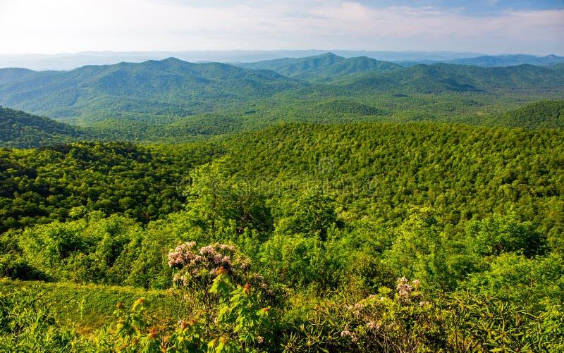 Ridge Mountain Overlook azul en Carolina del Norte foto de archivo