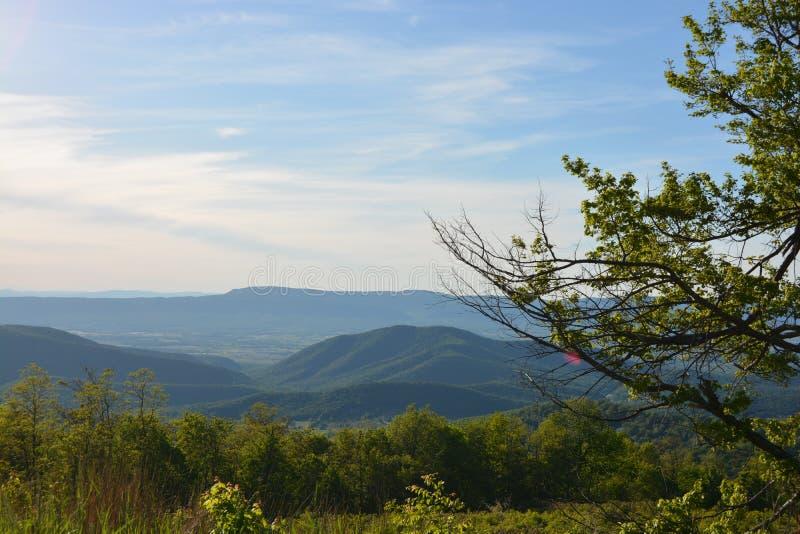 Ridge Mountains azul en verano imagen de archivo libre de regalías
