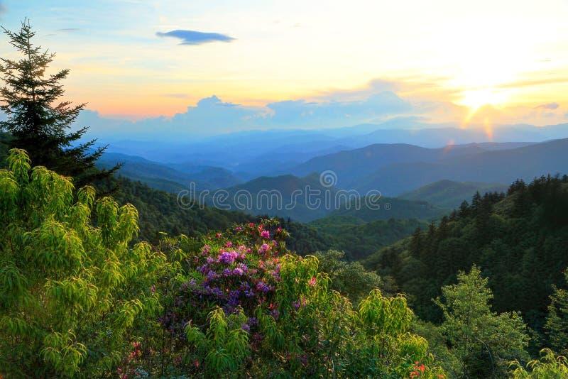 Ridge Parkway And Rhodoendron azul fotos de stock royalty free